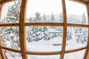 snowy trees seen through a window