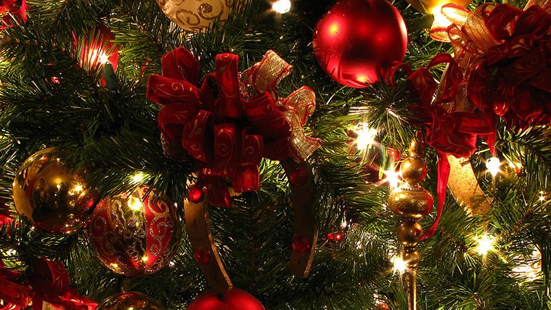 Avoid a Tragedy this Holiday Season: 7 Tips for Preventing a Christmas Tree-related Fire
